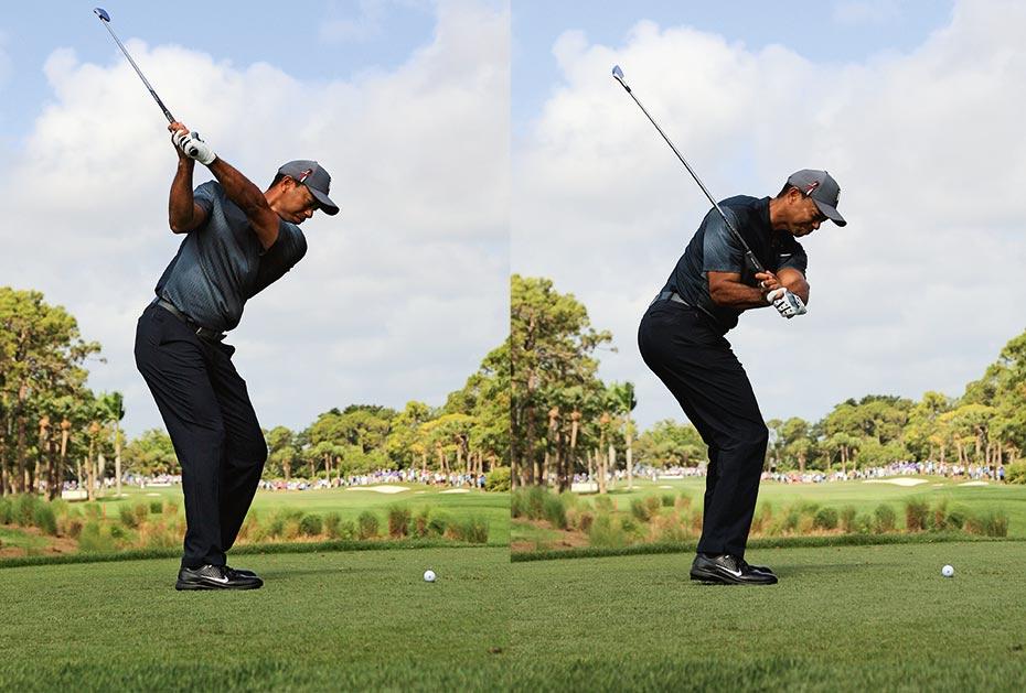 Tigers Bewegung: Erst rauf (links) und dann runter (rechts)
