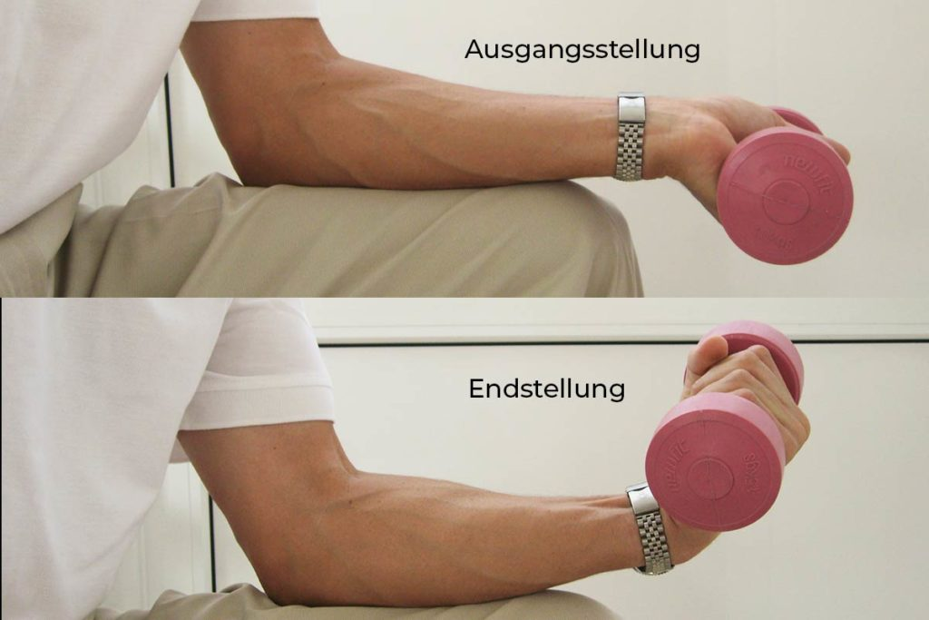 PLASMATRAINING. Trainieren der beugeseitigen Unterarmmuskulatur mittels leichter Kurzhantel; 4x 20–25 Wiederholungen